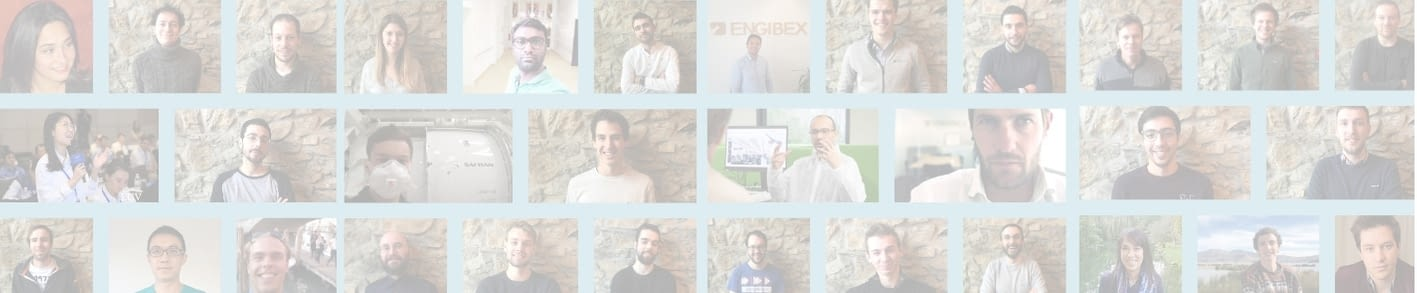 Faces of Engibex